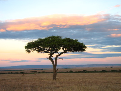 kenya-holliday-adventures-africa-1